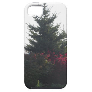 Nature lovers gifts Tree Flowers Template add TEXT Case For The iPhone 5