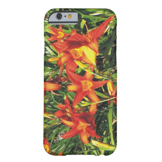 Nature Lovers' Springs Flowers Barely There iPhone 6 Case