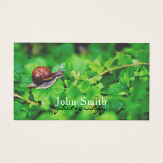 Nature macro photography business card