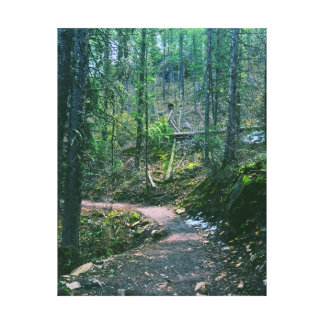 Nature Path Wall Canvas