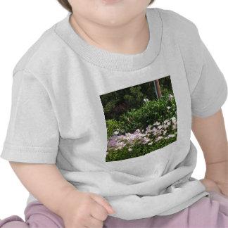 Nature Photo CherryHILL New Jersey America NVN663 T Shirts
