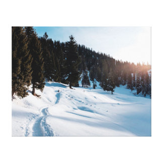 Nature photography |  Landscape  | Snow Canvas Print