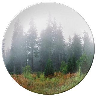Nature pine wood morning photo Decorative Plate