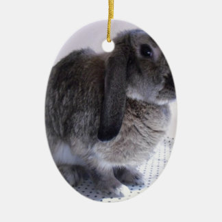 Nature rabbit bunny design ceramic oval decoration