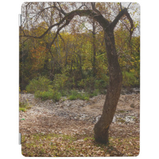 Nature Reaching Out iPad Cover