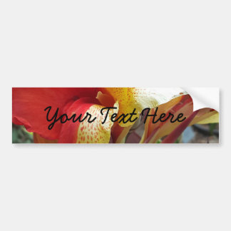 Nature Red Flower Floral Photography Bumper Sticker
