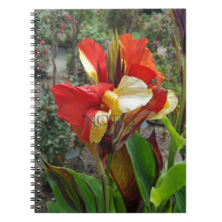 Nature Red Flower Floral Photography Notebooks