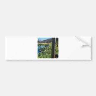 Nature Reserve Wilderness Water Hole Car Bumper Sticker