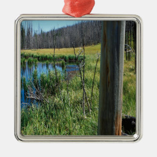 Nature Reserve Wilderness Water Hole Christmas Ornaments