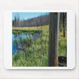 Nature Reserve Wilderness Water Hole Mousepad