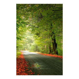 Nature Road Springtime Woods Stationery Paper