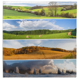 Nature scenes napkin