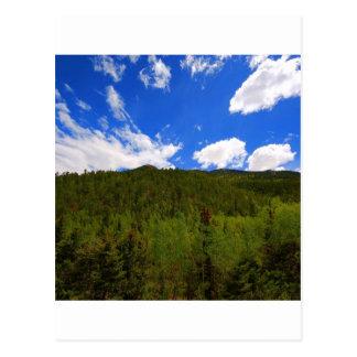 Nature Sky Blue Tree Hills Postcard