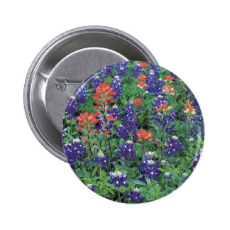 Nature Spring Flower Purple Spring Buttons