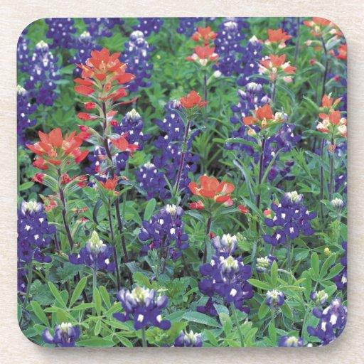 Nature Spring Flower Purple Spring Beverage Coaster