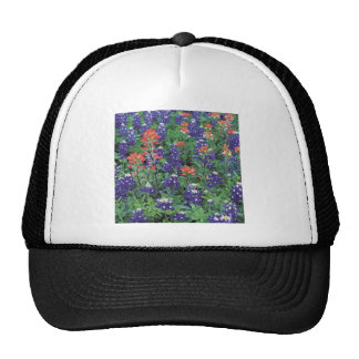 Nature Spring Flower Purple Spring Hat