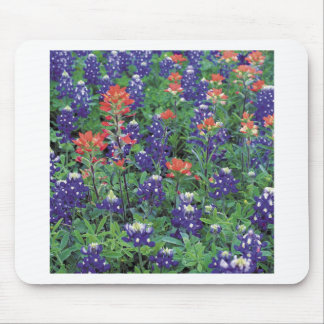Nature Spring Flower Purple Spring Mousepad