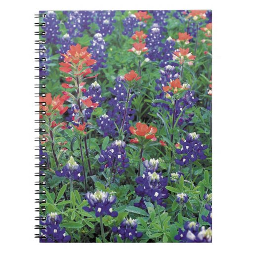 Nature Spring Flower Purple Spring Notebooks