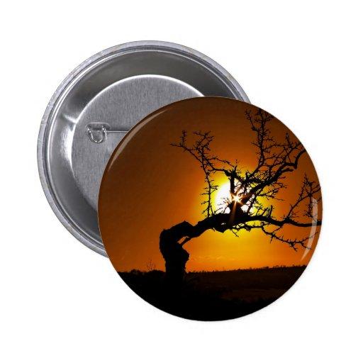 Nature Sunset Tree Piercing Light Pinback Button