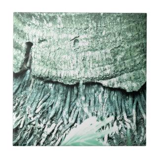 Nature Ceramic Tile