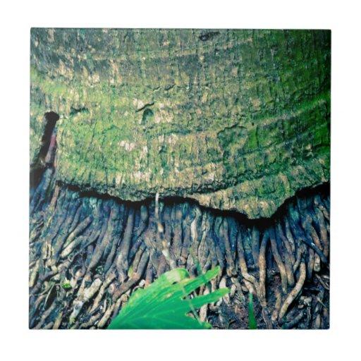 Nature Tiles