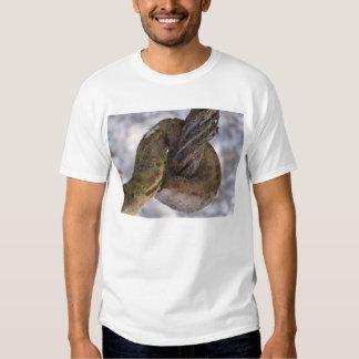 nature treads tee shirts
