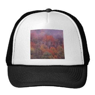 Nature Trees Autumn Mix Trucker Hats