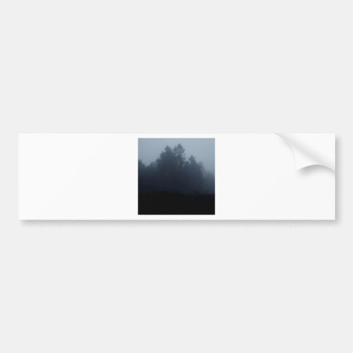 Nature Trees Fog Woods Bumper Stickers