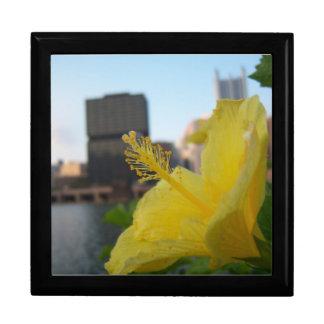 Nature trumps city large square gift box