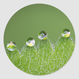 Nature Water Drops Connect with Cosmic Classic Round Sticker