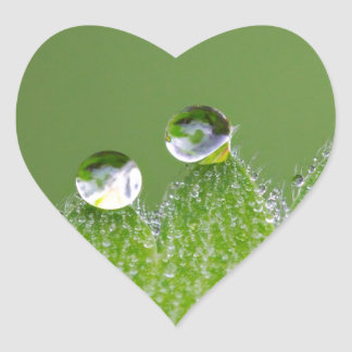 Nature Water Drops Connect with Cosmic Heart Sticker