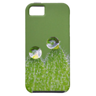 Nature Water Drops Connect with Cosmic iPhone 5 Cases