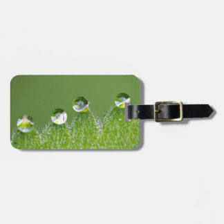 Nature Water Drops Connect with Cosmic Luggage Tag
