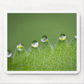 Nature Water Drops Connect with Cosmic Mouse Pad
