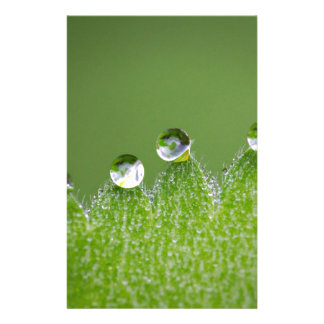 Nature Water Drops Connect with Cosmic Stationery