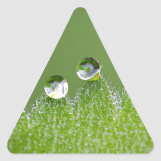 Nature Water Drops Connect with Cosmic Triangle Sticker
