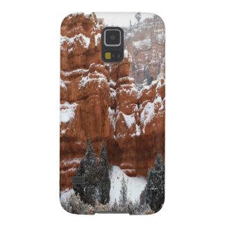 Nature Winter Cold Canyon Galaxy Nexus Case