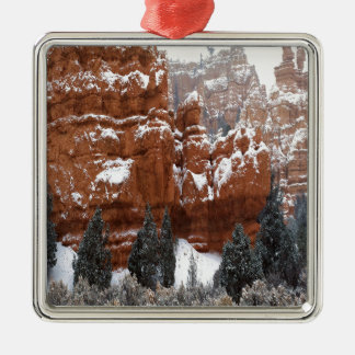 Nature Winter Cold Canyon Ornaments
