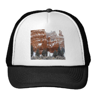 Nature Winter Cold Canyon Mesh Hat