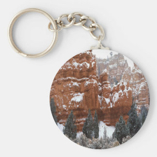 Nature Winter Cold Canyon Keychain