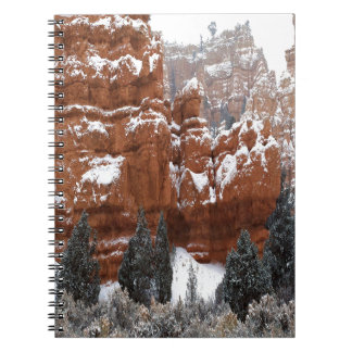 Nature Winter Cold Canyon Journal