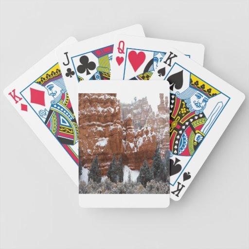 Nature Winter Cold Canyon Poker Cards