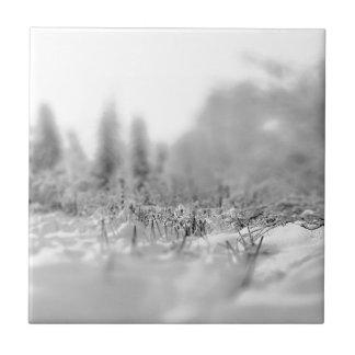 Nature Winter Frozen View Ceramic Tile