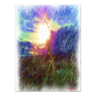 Nature with the sun looking like a flower photo print