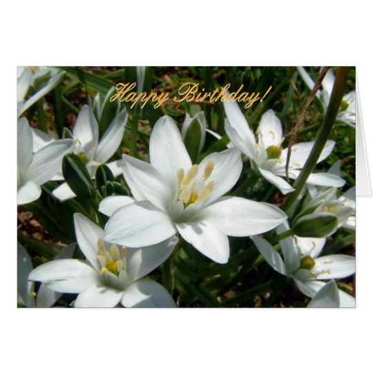 Nature's Bouquet | Happy Birthday! Card