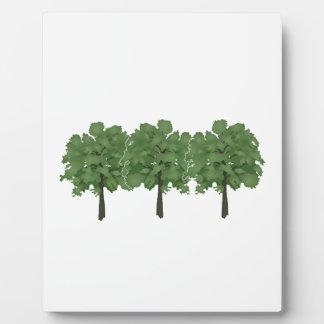 Natures Brush Plaque