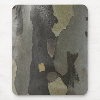 Nature's Camouflage -Sycamore Bark mousepad