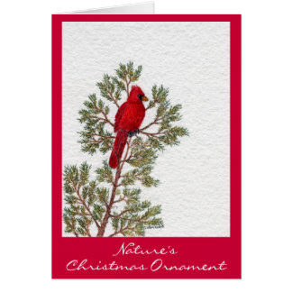 Nature's , Christmas Ornament Card