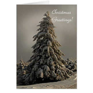 Nature's Christmas Tree - Greeting Card