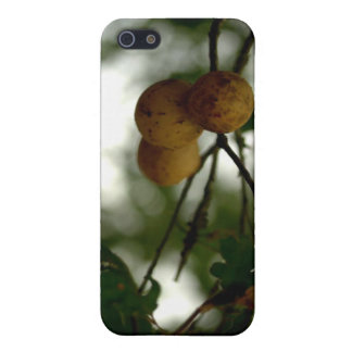 Natures Fruit Case For iPhone 5